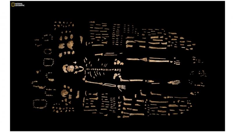 _almost_human.jpg