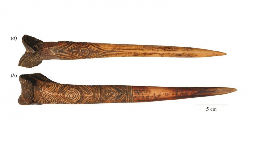 bone_daggers_from_new_guinea_hood_museum_photo_2.jpeg