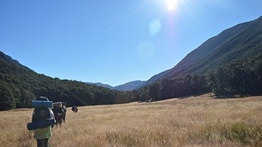 FSP students hiking in New Zealand.