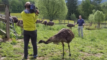 Behind the scenes while filming Bipedalism