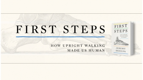 Jeremy DeSilva: First Steps Book Cover