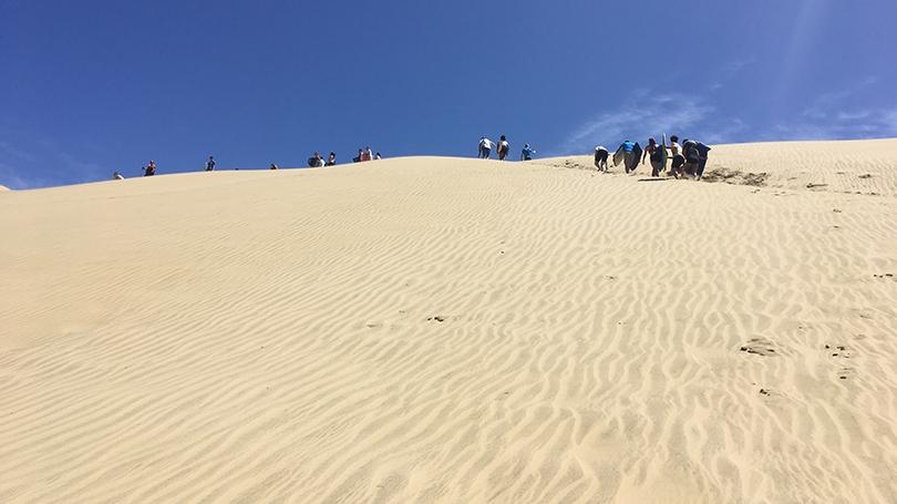 FSP New Zealand 2020 Dunes Photo Sienna Craig